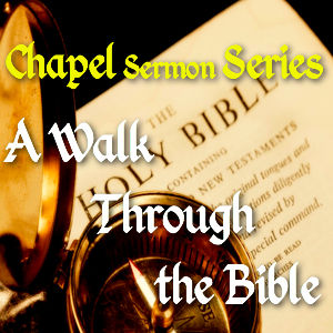 A Walk Through the Bible